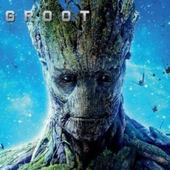 Groot Trader