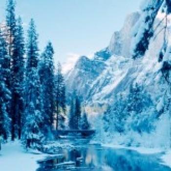 ML Winter