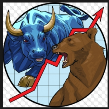Nico Bear Bull