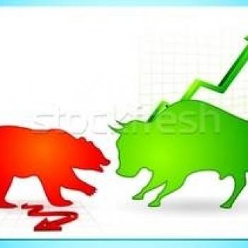 bull x bear