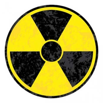 Radiation Kills Birds
