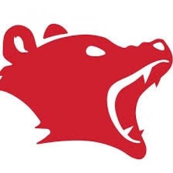 Ray Red Bear