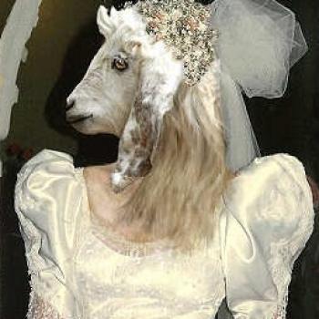 Bride of Doc Salman