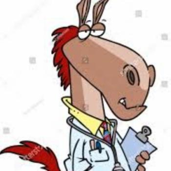 King Donkey Doc Darius