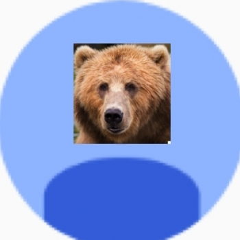Barry Bearish Bear