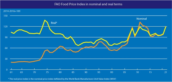 FAO saw food price index is rising at its fastest rate since 2011