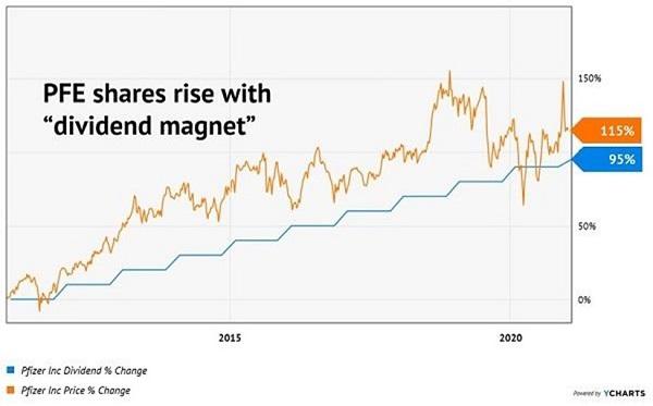 PFE-Dividend Magnet