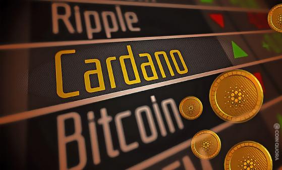 Cardano's cFund, Picks COTI for Its First VC Investment