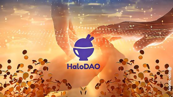 HaloDAO Raises $3.5 Million Seed Investment To Create a Global Liquidity Network