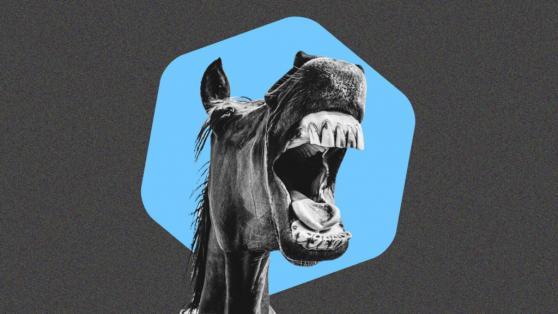 Telcoin: Dark Horse Of Cryptos?
