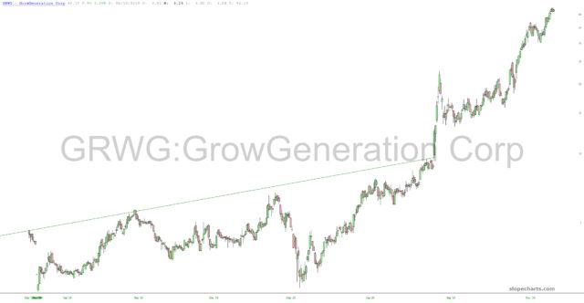 Grow Generational Chart.