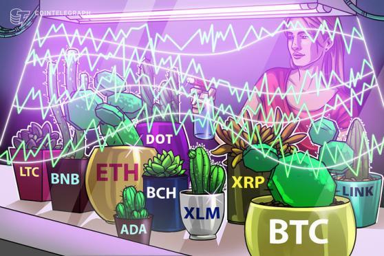 Price analysis 2/1: BTC, ETH, XRP, DOT, ADA, LINK, LTC, BCH, BNB, XLM