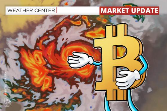 Bitcoin prints biggest hourly candle in history after BTC rebounds strongly to $54K
