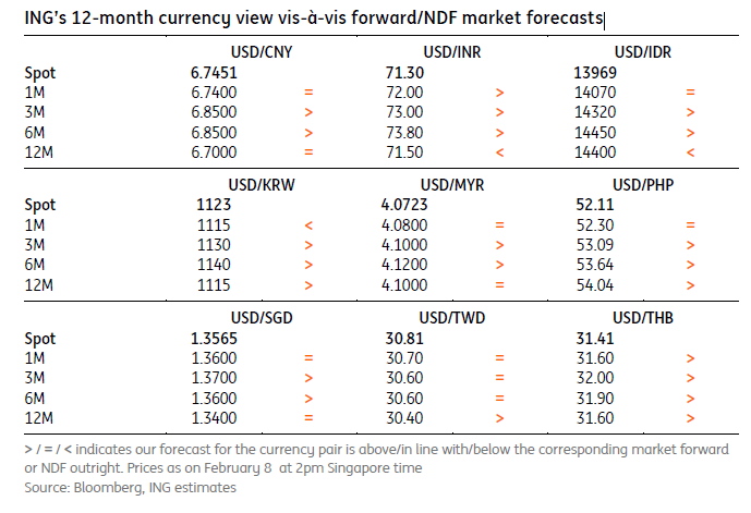 ING's 12-Month Currency View Vis-À-Vis Forward-NDF Market Forecasts