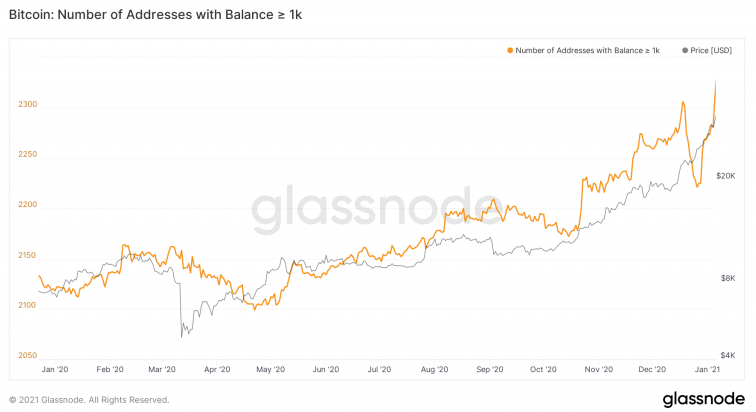 Bitcoin Number Of Addresses With Balance ≥1-K