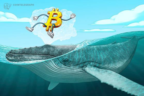 Whale Moves $1.3 Billion in Bitcoin … the Question Is Why?