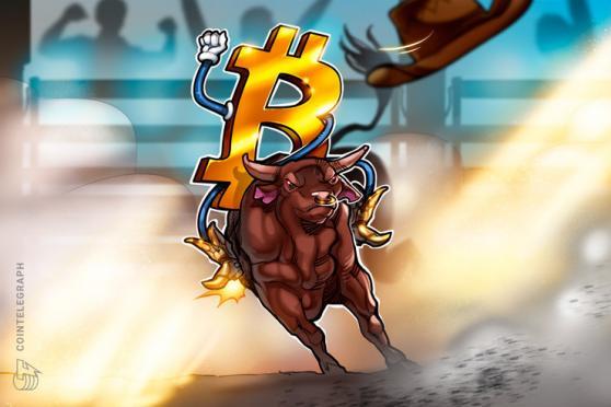 bull run crypto 2021