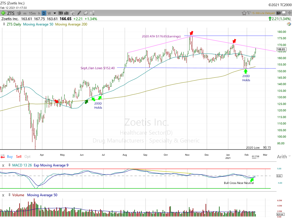Zoetis Daily Chart.