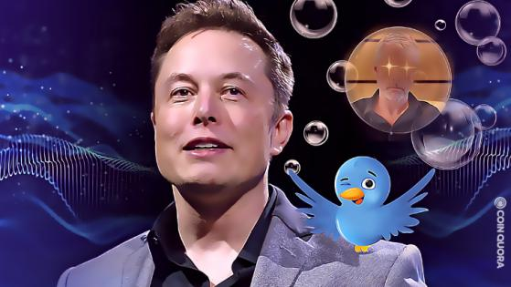 The Crypto Twitter Community Trolls Elon Musk