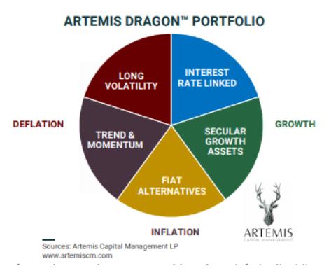 Artemis Dragon Portfolio