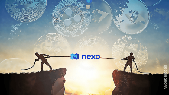 Nexo Set to Make a Sizable Donation to The Brink Foundation
