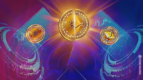 Cardano vs Ethereum: Who's Winning the Smart Contract Race?