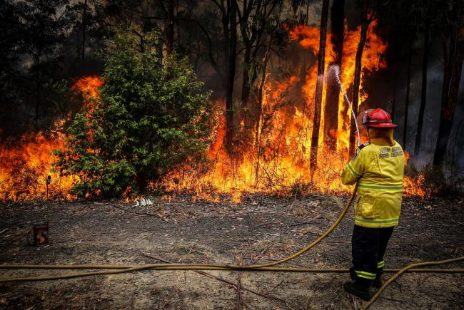 © Bloomberg. An NSW Rural Fire Service volunteer douses a fire during back-burning operations in bushland in New South Wales, Australia in 2019.