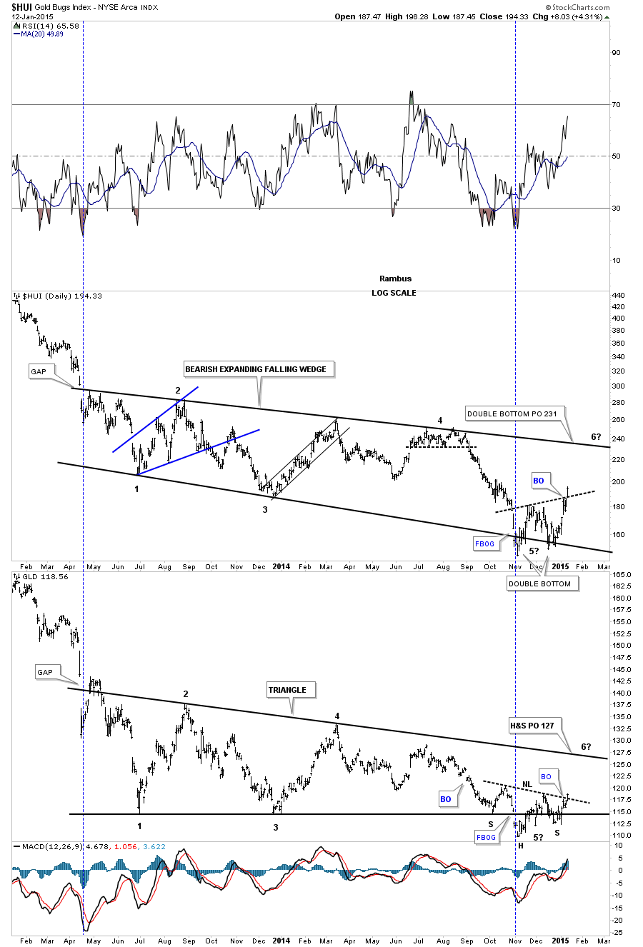 HUI and Gold Daily
