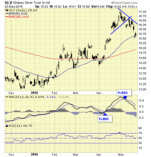 SLV iShares Silver Trust Daily Chart