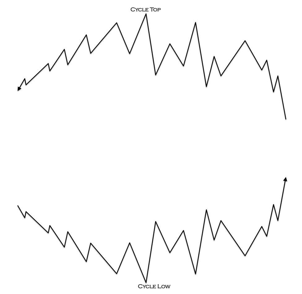 half silvered mirror entanglement vs relationship