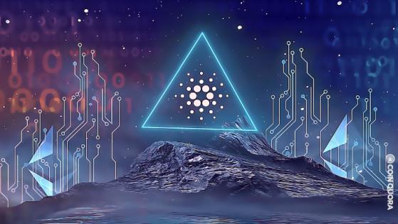 Cardano's IOHK Releases Ethereum 'Converter'