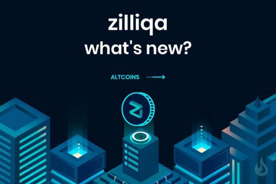 Ziliqa a closer look